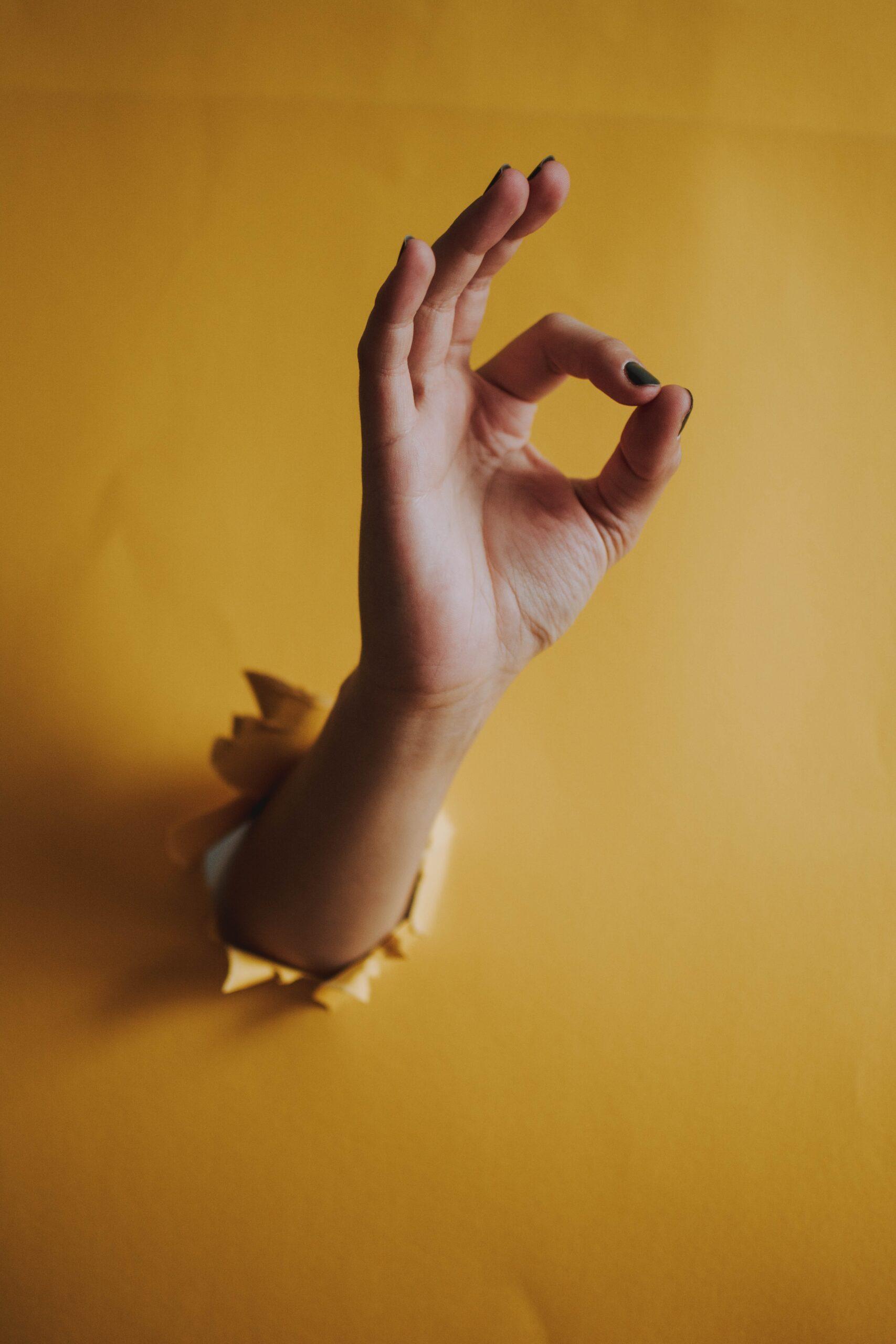 history of sign language infomixture.com